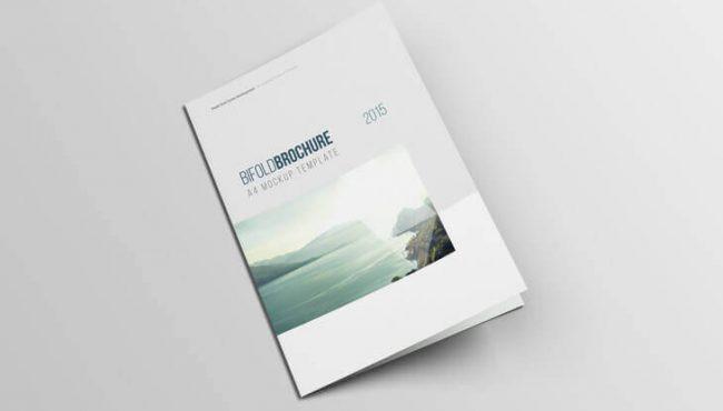Elegant brochure