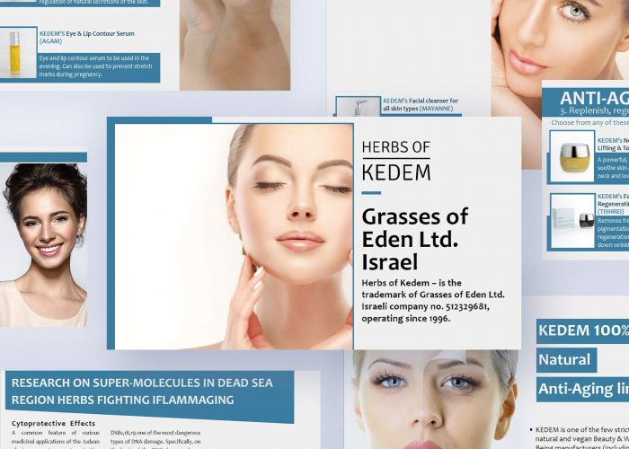 KEDEM - עיצוב מצגת עסקית